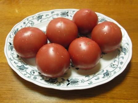 勝井農園トマト.JPG