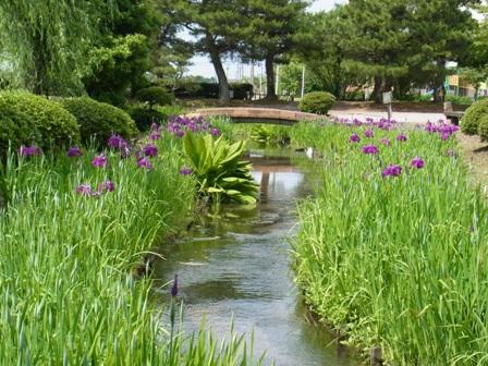 高瀬遺跡公園2.JPG