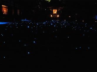 青蓮院庭園ライトアップ.JPG