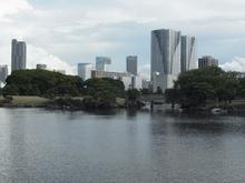 潮入りの池.JPG