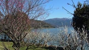 三方湖と梅林Ⅰ.JPG