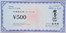氷見うどん500円券.jpg