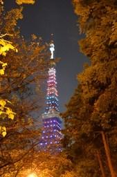 増上寺参道からの東京タワー.jpg